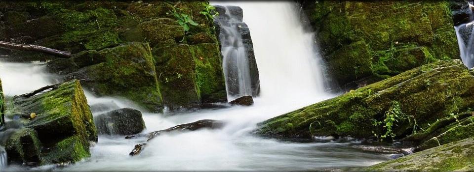 Ein Bild zum Thema Wasser