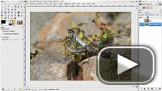 Press PLAY and LEARN - Video-Tutorials für The Gimp